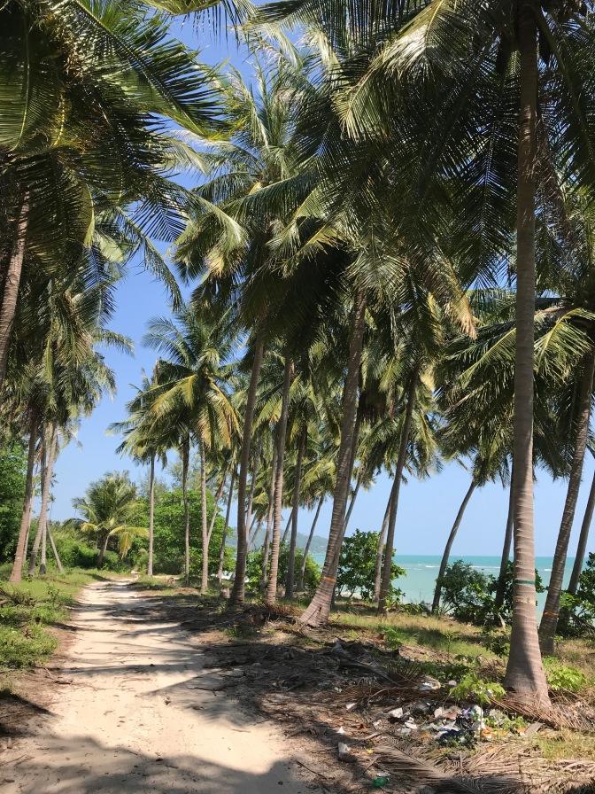 De weg naar Coco Beach Nar