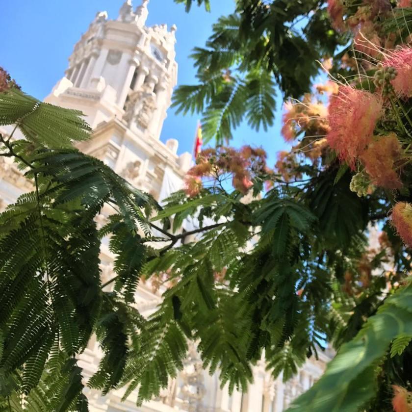 Madrid Kerk